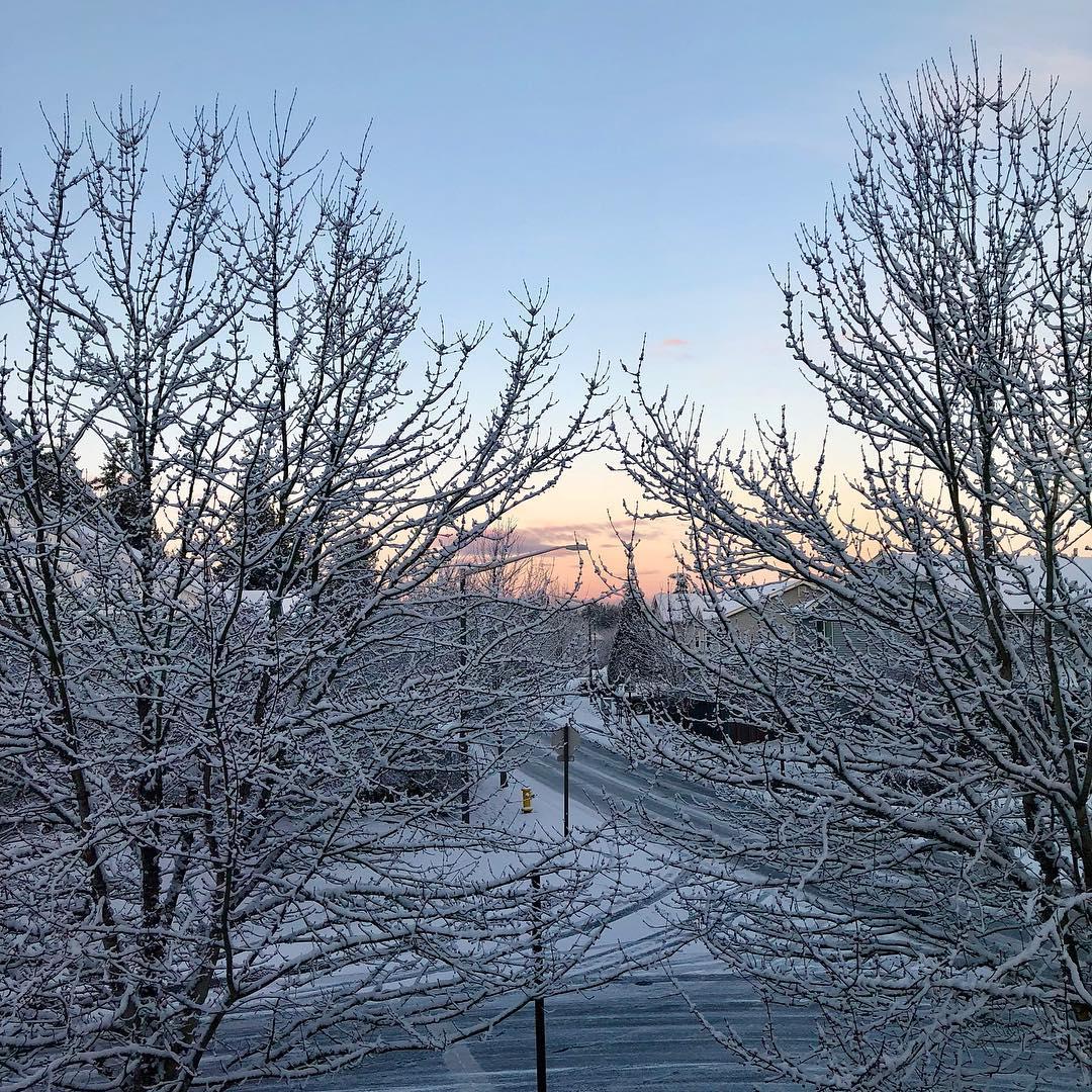 Snowy sunrise!